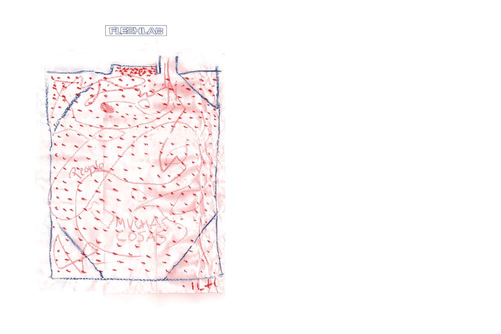 Fleshlab-Cata1